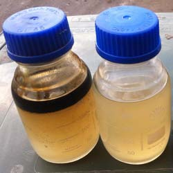 Oily water samples from rental separator