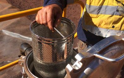 3 Steps to Choosing the Perfect Debris Strainer